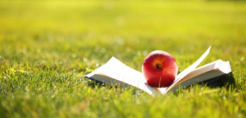 Tutoring Topics For The Summer Months